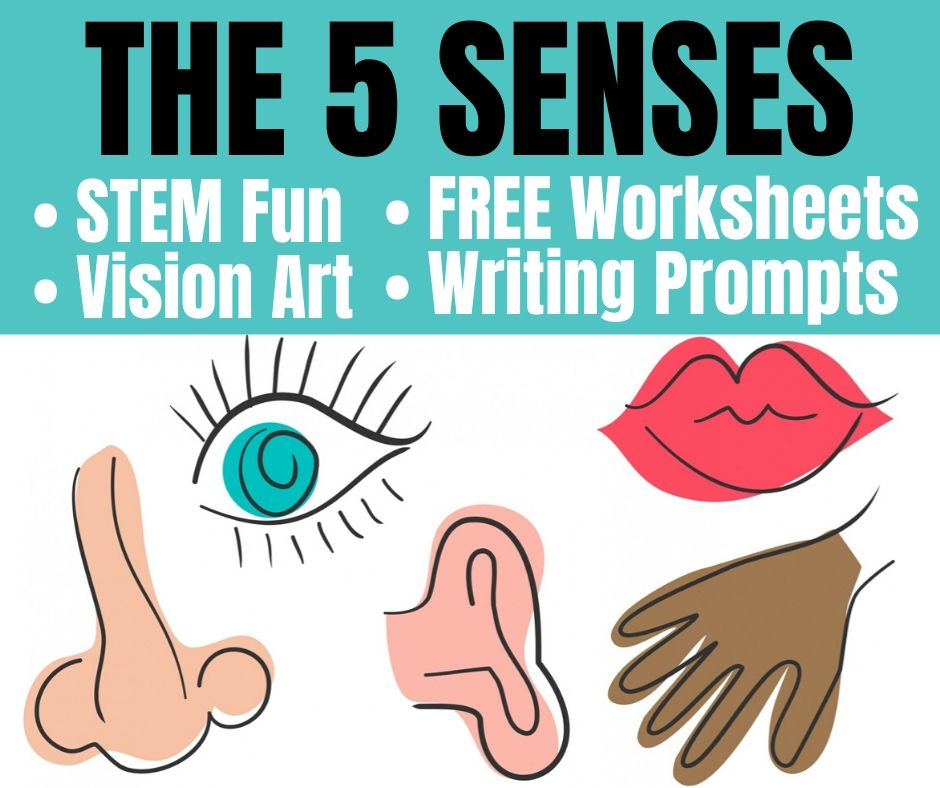 It is a graphic of My Five Senses Book Free Printable intended for pre k
