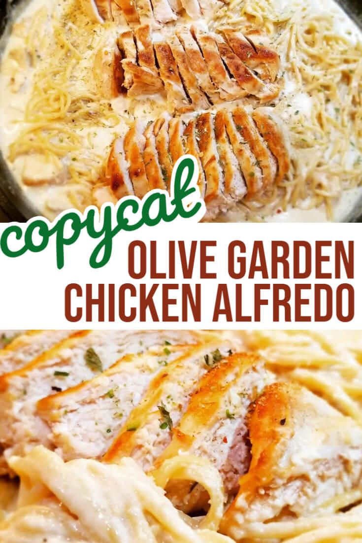 Olive Garden Chicken Alfredo Recipe Easy